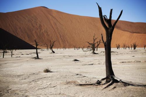 08 Namibia Sossusvlei