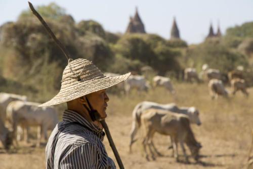 Bagan 28